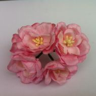 Цветы магнолии розовые