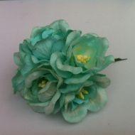 Цветы магнолии мятные