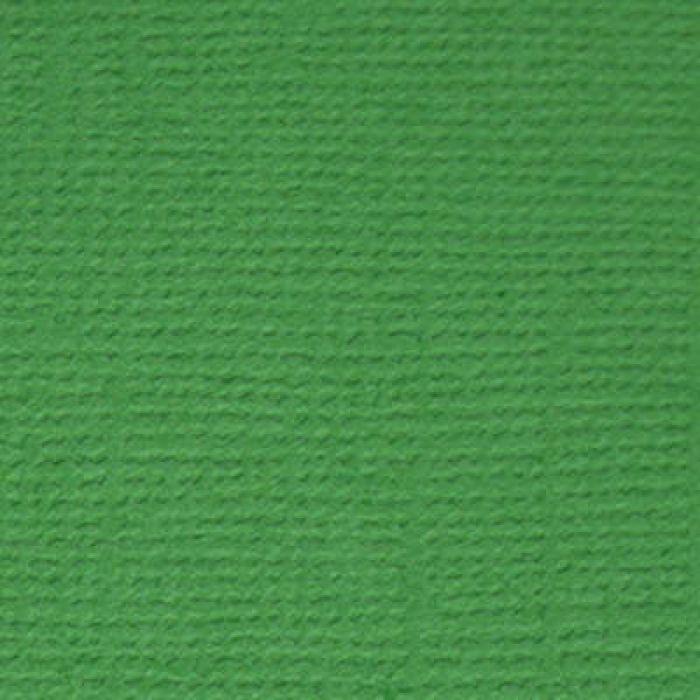 Кардсток текстурированный Лесной папоротник (т.зелёный) для скрапбукинга