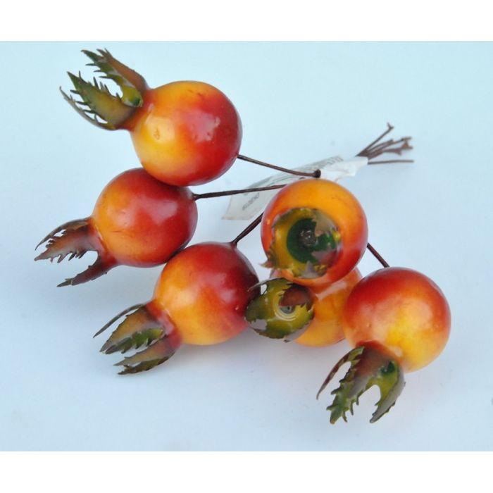 Плоды шиповника для скрапбукинга