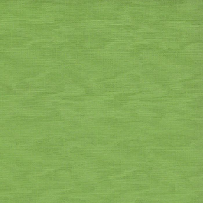 Кардсток текстурированный Зелёный папоротник для скрапбукинга