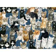 Отрез ткани 2, коллекция Раз - котёнок, два - котёнок