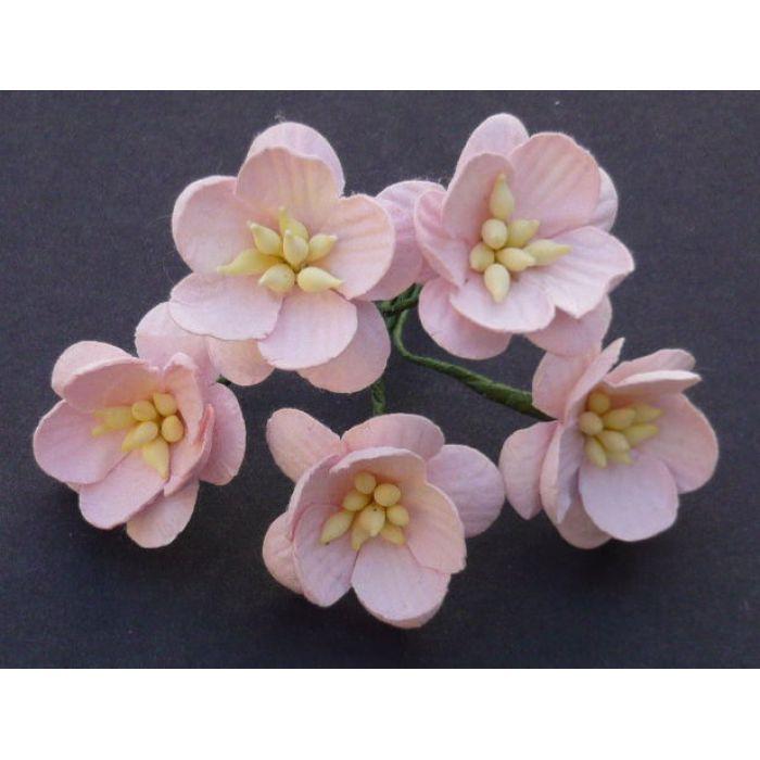 Цветы вишни бледно-розового цвета для скрапбукинга