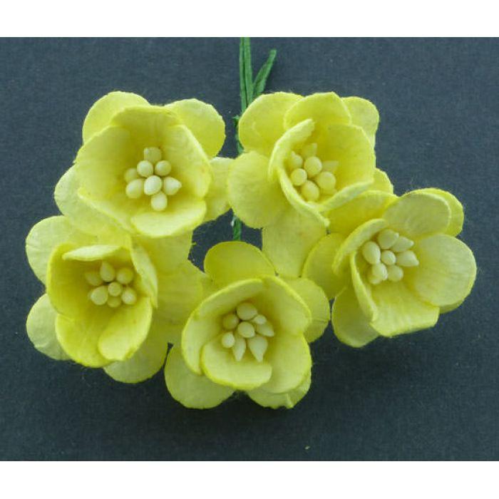 Цветы вишни желтого цвета для скрапбукинга