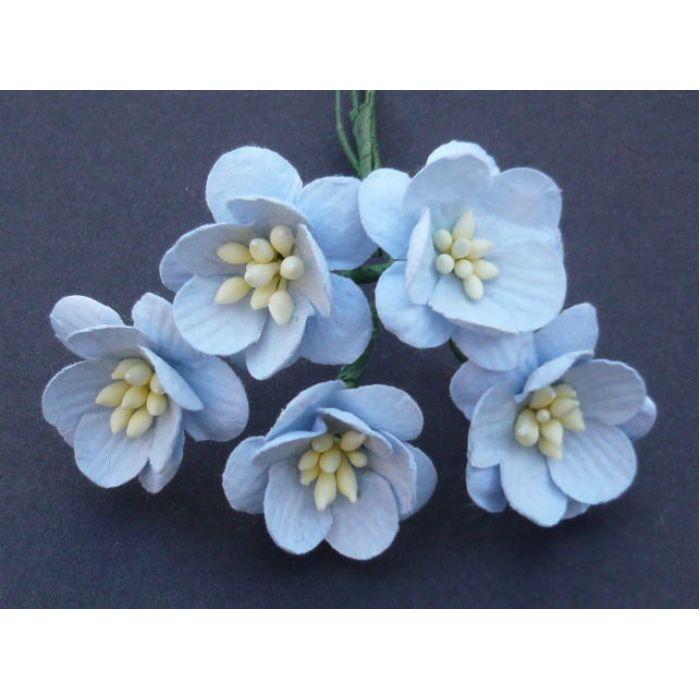 Цветы вишни нежно-голубого цвета для скрапбукинга