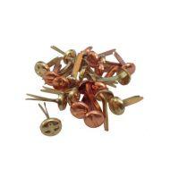 Набор брадсов винтики (металлик) 5,5 мм