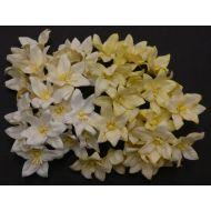 Лилии бело-кремового цвета