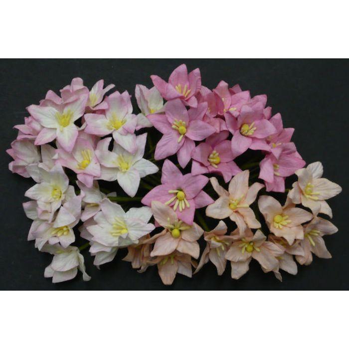 Лилии бело-розового цвета для скрапбукинга