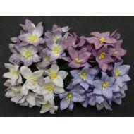 Лилии бело-лилового цвета