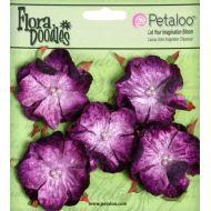Набор цветов  Роза дикая сливовая