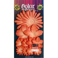 Набор цветов  Paprika