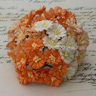 Ромашки бело-оранжевые