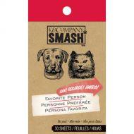Блокнот Smash: Кот и пес, двое из Штатов