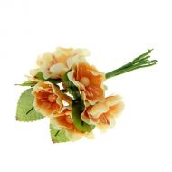 Набор цветов Циния бежевая