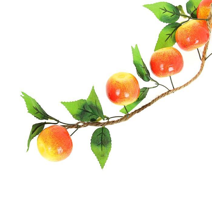 Связка яблок для скрапбукинга
