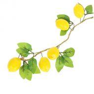 Связка лимонов
