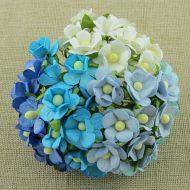 Цветы голубая смесь
