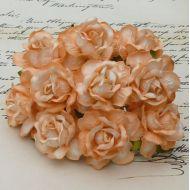 Роза дикая персиковая, 40 мм