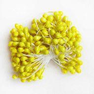 Тычинки большие, цвет - желтый