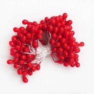 Тычинки большие, цвет - красный