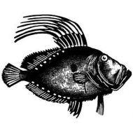 Штамп силиконовый Рыба 57