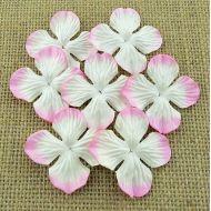 Гортензии бело-розовые (50 мм)