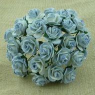 Розы оттенки голубого, 25 мм