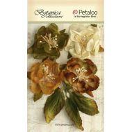 Набор цветов Ботаника слоновая кость/ зеленые/коричневые