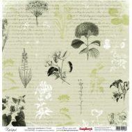 Бумага Гербарий, коллекция Ветер странствий
