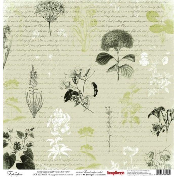 Бумага Гербарий, коллекция Ветер странствий для скрапбукинга