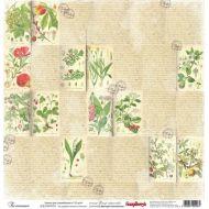 Бумага Ботаника, коллекция Ветер странствий
