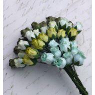 Бутоны роз белые оттенки зеленого
