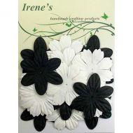 Набор цветов, белые и черные