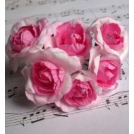 Роза парковая двутоновая, цвет - нежно-розовый/розовый