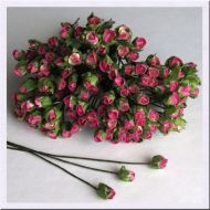 Роза с закрытым бутоном, цвет бело-розовый