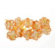 Цветки вишни персиковые