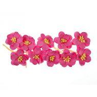 Цветки вишни ярко-розовые