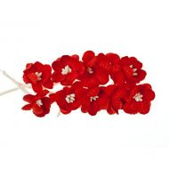 Цветки вишни красные