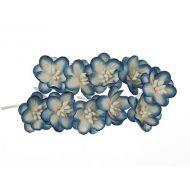 Цветки вишни бело-синие