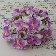Цветы гардении сиренево-фиолетового цвета