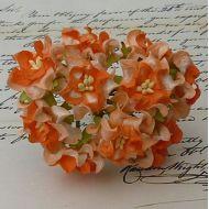 Цветы гардении оранжевого цвета