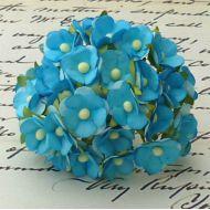 Цветы бирюзового цвета