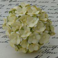 Цветы бледно-желтого цвета