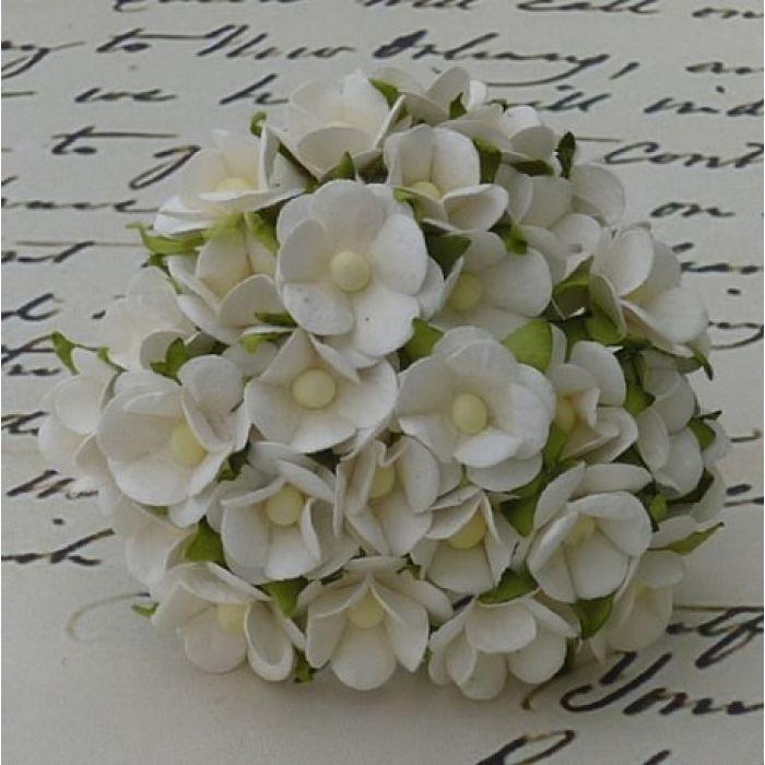 Цветы белого цвета для скрапбукинга