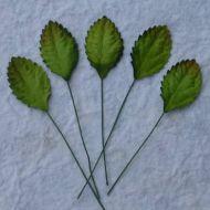 Листья зеленые, 30 мм