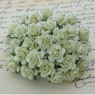 Розы мятно-зеленые, 25 мм