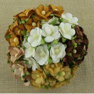 Цветы коричневая смесь