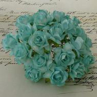 Роза дикая голубая, 30 мм