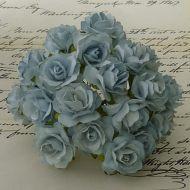 Роза дикая бледно-голубая, 30 мм