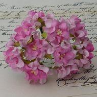 Цветы гардении розовых оттенков